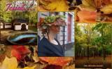 Jesień w Bytomiu