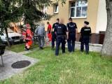 Policjanci z Opola zatrzymali 86-latka, który podczas alkoholowej libacji chwycił za maczetę...