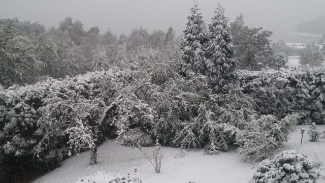 Dobczyce w śniegu