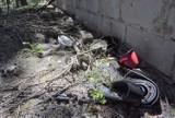 Śmieci w zielonogórskich lasach? Podrzucają je sami mieszkańcy. A inni mają już takiego bałaganienia po dziurki w nosie