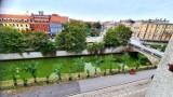 Dlaczego rzeka Prosna w Kaliszu zrobiła się zielona? ZDJĘCIA, WIDEO