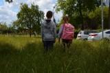 W Bełchatowie trawa po kolana. Czy tereny zielone zostaną uporządkowane? [ZDJĘCIA]
