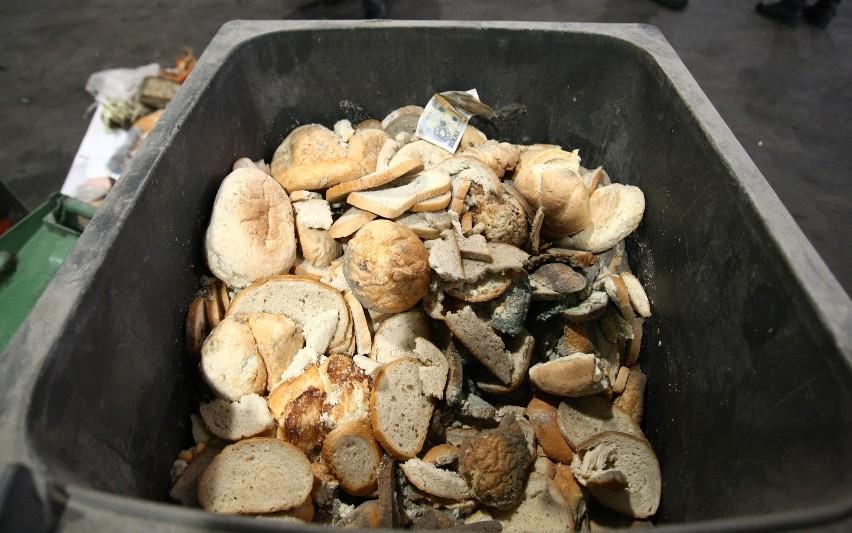 W ciągu trzech godzin pracownikom MPO udało się wyciągnąć ze śmieci ok. 150 kilogramów jedzenia