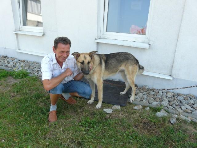 Dariusz Ornal, psycholog zwierzęcy, oswaja psa, który trafił tu kilka dni temu