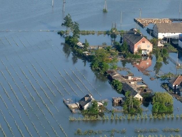 Powódź 2010 w Wilkowie
