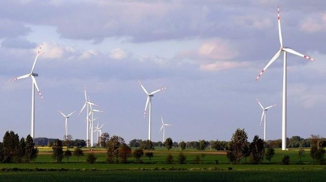 Organizacje zrzeszające firmy budujące farmy wiatraków twierdzą, że łamanie prawa ma charakter marginalny, a  przekazywanie dotacji dla gmin jest legalne