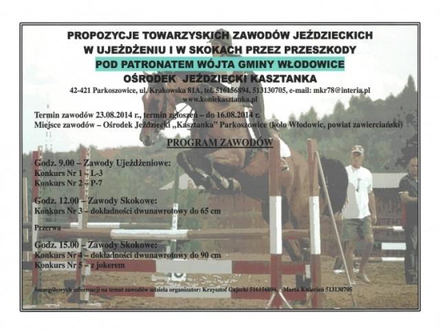 Zawody jeździeckie w Parkoszowicach.