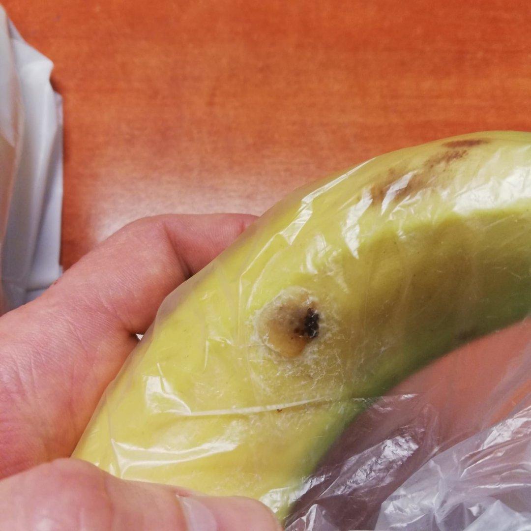 Mieszkanka żor Kupiła W Lidlu Banana Z Kokonem W środku Czy To