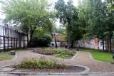 Parki kieszonkowe w Łodzi. Na Starym Polesiu powstaną nowe parki [MAPA ZDJĘCIA]