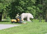 Trwa wiosenne koszenie traw w Chełmie. Jest kilka nowości. Zobacz zdjęcia