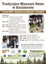 Majówka na Śląsku Cieszyńskim. Weekendowe wydarzenia w regionie