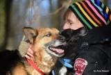 Toruń: Schronisko poszukuje nowego domu dla psów. Nero i Murzynek, nierozłączni przyjaciele szukają nowego domu