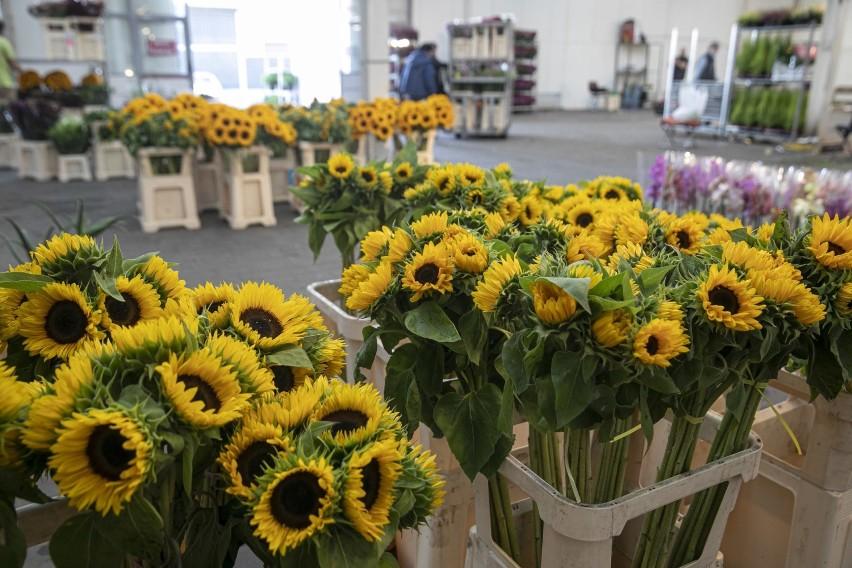 Kwiaty I Inne Krzewy Ozdobne Kupisz Na Gieldzie Przy Ul Spichlerzowej W Rzeszowie Zdjecia Nowiny