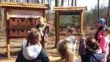 Przyrodnicze zajęcia w Chudaczewku. Poznali budowę lasu [ZDJĘCIA]