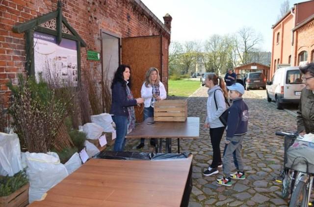Nowy Dwór Gdański. W sobotę 21 kwietnia w Żuławskim Parku Historycznym każdy chętny będzie mógł wymienić plastikowe butelki typu PET na sadzonkę drzewka.