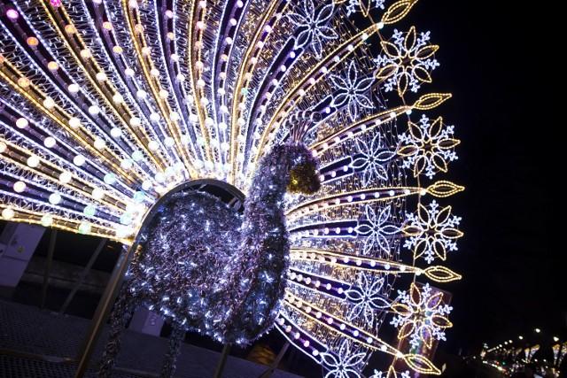 Iluminacja świąteczna Warszawy