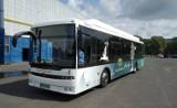 Krosno testuje autobusy elektryczne. Kolejny weekend bezpłatnych kursów. Tym razem pasażerowie MKS pojadą za darmo do uzdrowisk
