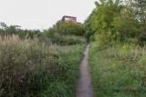 Co będzie z terenem wokół Fabryki Wody w Szczecinie? Teraz rosną tam ogromne chaszcze!