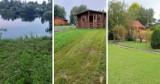 Ogródki działkowe w Żorach i okolicy. Ile kosztują działki w okolicy?