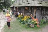 Ogrody Kapias jesienią zachwycają kolorami. Byliście tam już? Zobaczcie przepiękne ZDJĘCIA!