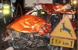 Małopolska. Najbardziej dramatyczne wypadki drogowe z udziałem zwięrząt [ZDJĘCIA, WIDEO]