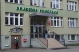 Co warto studiować na Akademii Pomorskiej? Miejsca słupskiej uczelni w Rankingu Szkół Wyższych Perspektywy 2021