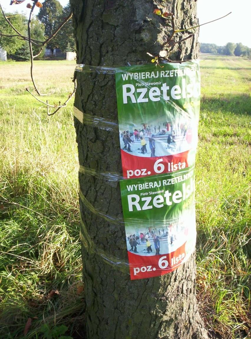 Plakaty Wyborcze Czyli Taśmą Przeźroczystą Do Drzewa