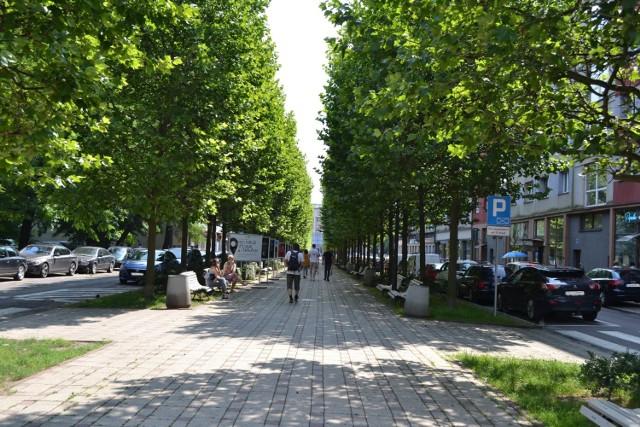 Głosowanie w ramach Budżetu Obywatelskiego w Sosnowcu potrwa do 18 października