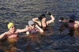 Bydgoski Klub Morsów kąpał się na Wyspie Młyńskiej [zdjęcia, wideo]