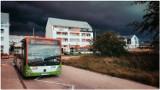 Połamane gałęzie, zalane drogi: oberwanie chmury nad województwem lubelskim. Zobacz zdjęcia i wideo od Czytelników!