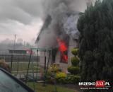Przyborów. Pożar budynku gospodarczego. Z ogniem walczyło pięć zastępów straży pożarnej. Jedna osoba trafiła do szpitala [ZDJĘCIA]