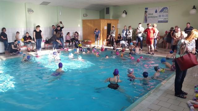 Mistrzostwa Chorzowa w pływaniu [ZDJĘCIA]