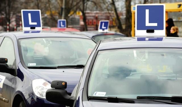 Dziewięciu uczniów z Zespołu Szkół Ponadgimnazjalnych w Łodzierzy dostało prawo jazdy za darmo. Wezmą udział w bezpłatnym kursie kategorii B.