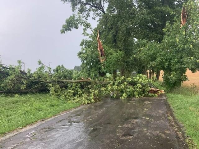 Burza w powiecie grudziądzkim.