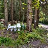 Brak słów! Ktoś wyrzucił muszle klozetowe w Parku Narodowym Gór Stołowych