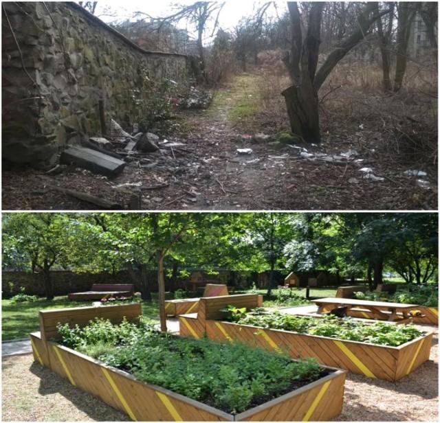 Kraków - zagospodarowanie nieużytku na ogród społeczny (przed i po)
