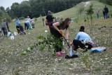 Zduńskowolanie posadzili swój las nad Kępiną [zdjęcia i wideo]