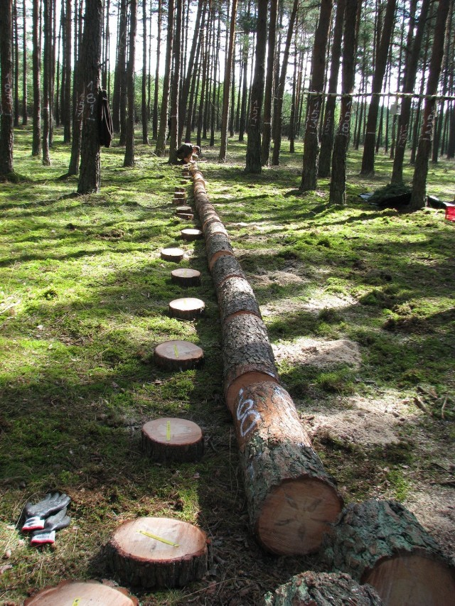 Badania nad określaniem biomosy