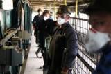 Koronawirus: Tak górnicy radzą sobie w kopalni