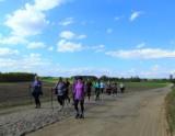 Wiosenny Marsz Nordic Walking w Starej Kiszewie. Uczestnicy udali się nad jezioro Wygonin [ZDJECIA]