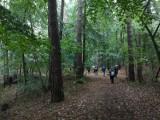 """Park Krajobrazowy """"Mierzeja Wiślana"""" organizuje konkursy - jeden dla dorosłych, drugi dla uczniów szkół podstawowych"""