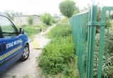 Podrzucił śmieci koło Centrum Przesiadkowego w Ostrowie. Teraz czeka go kara