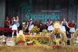 Dożynki gminne w Straszynie. Święto plonów gminy Pruszcz Gd. przyciągnęło tłumy mieszkańców  ZDJĘCIA