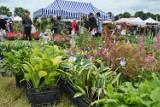 Barwy lata - dary jesieni 2021. Wystawa KPODR w Minikowie z kiermaszem ogrodniczym, zwierzętami i świętem ziemniaka
