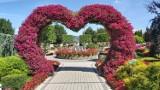 VI Festiwal Kwiatów w Parku Miniatur Minieuroland Kłodzko 2021 już 4 lipca