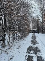 W Krakowie sypnęło śniegiem! Jaka będzie pogoda na najbliższe dni w Małopolsce? Sytuacja na drogach [MAPY, ZDJĘCIA]