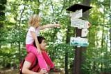 Szlaki turystyczne w Czechach. Co musisz wiedzieć?