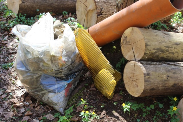 Zdjęcie z wiosennej akcji sprzątania potoku Źródło Marii w Gdyni.
