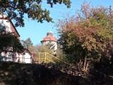 Spacerowe miejsca w Zielonej Górze: spokojne osiedle Słowackiego jesienią