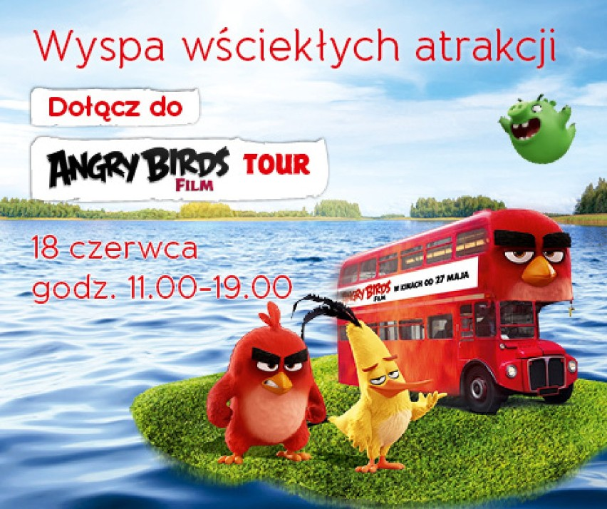 Angry Birds w Galerii nad Jeziorem